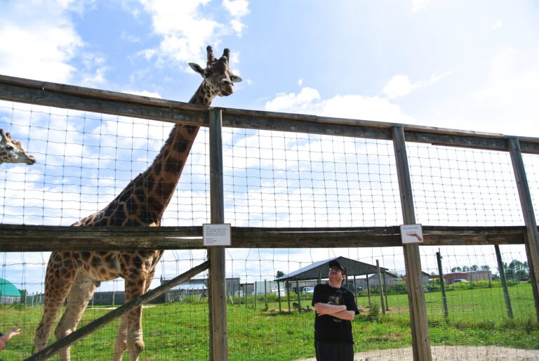 The Social Club Takes a Trip to the Elmvale Zoo