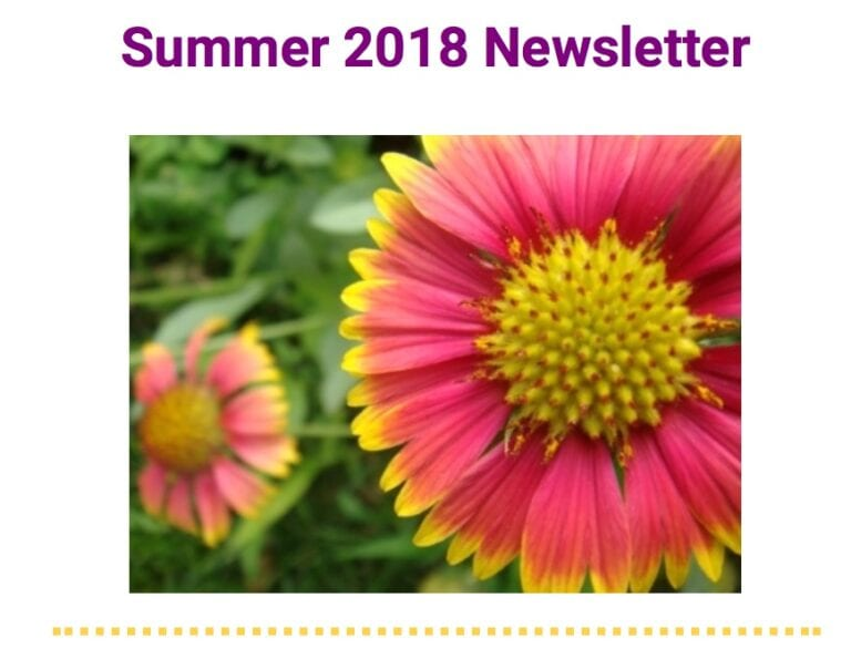 Integrated Autism Consulting Newsletter Summer 2018